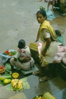 India-Sur-48